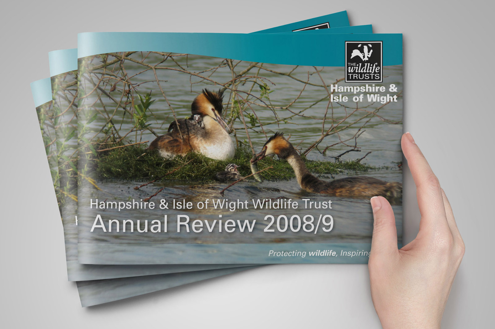 annual review artwork